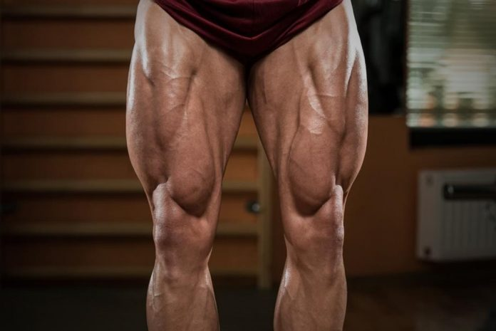legs workouts